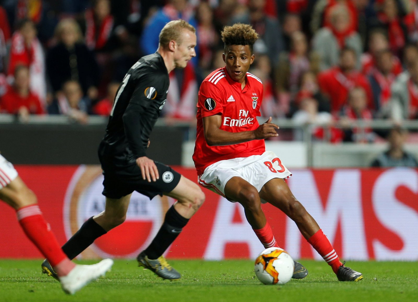 Gedson Fernandes could return to Benfica in January