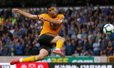 Raul Jimenez would have been an excellent addition to Tottenham Hotspur