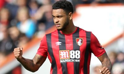 Joshua King would be a viable target for Tottenham