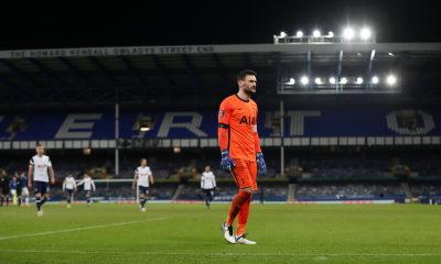 Hugo Lloris has been inconsistent this season
